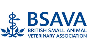 Head of Congress role at BSAVA