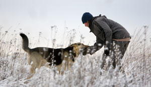 Vets offer advice on winter walkies and other cold weather hazards