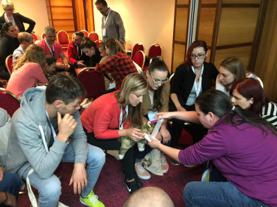 Another successful East European Regional Veterinary Conference (EERVC)