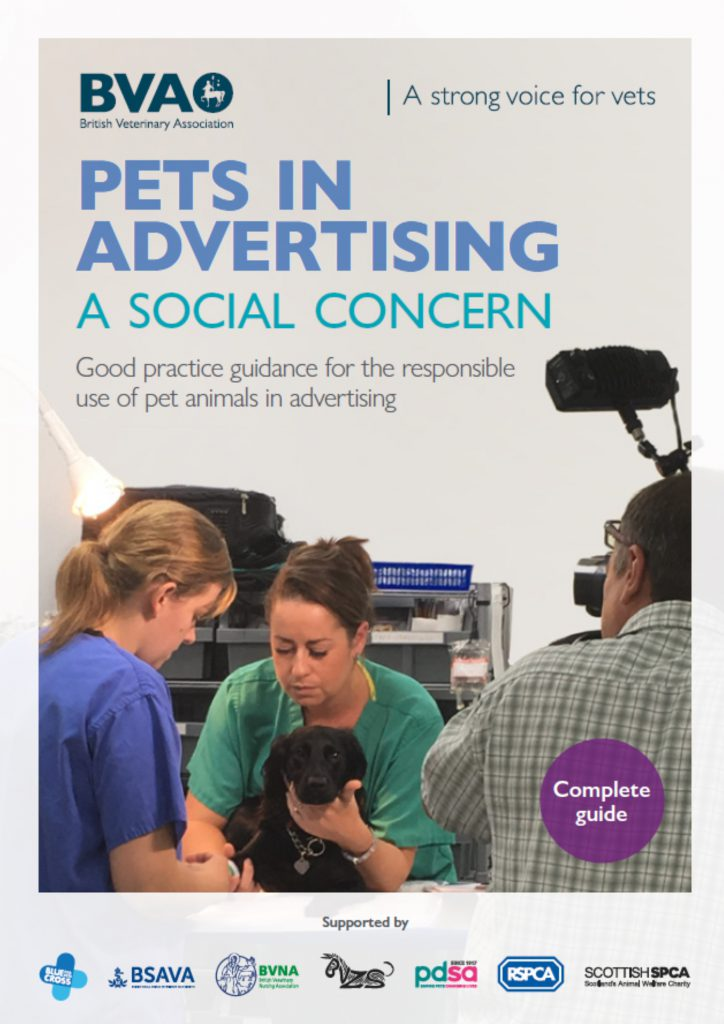 Vet practices must lead from the front in responsible portrayal of animals in marketing, say leading veterinary organisations