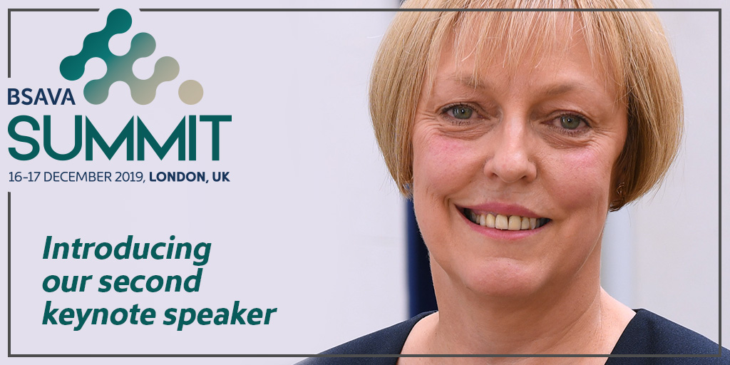 'Stand up for your profession' Chief Army Nursing Officer keynote at BSAVA Summit