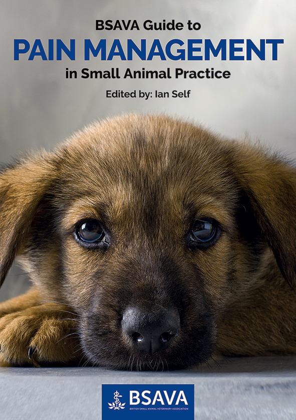 A helping hand for pain management in small animal practice