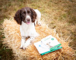 BSAVA supports Kennel Club's DNA genetic testing venture