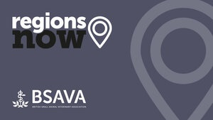 The shows will go on confirm BSAVA's Regions Now Volunteers