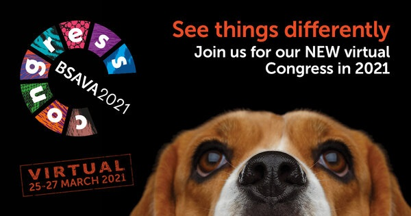 BSAVA Virtual Congress Accredited by Veterinary Council of Ireland